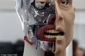 رباتهای بیمار