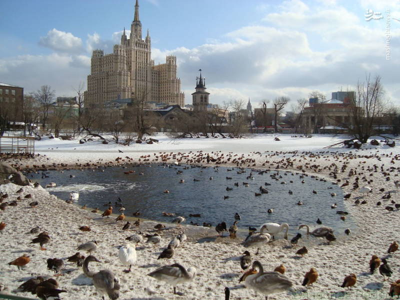 ساختمان مسکونی در میدان کودرینسکی مسکو
