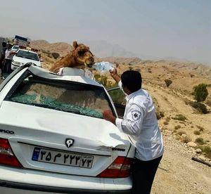 عکس/ اقدام قابل تحسین یک امدادگر
