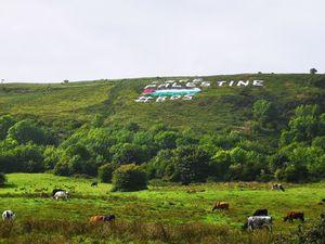 حمایت از فلسطین به سبک ایرلندیها
