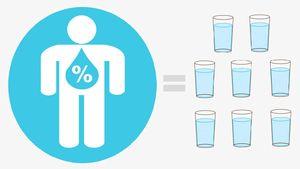 سلامت نمایه آب