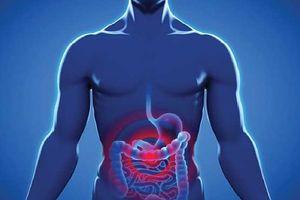 روده نمایه  سندرم روده تحریک پذیر