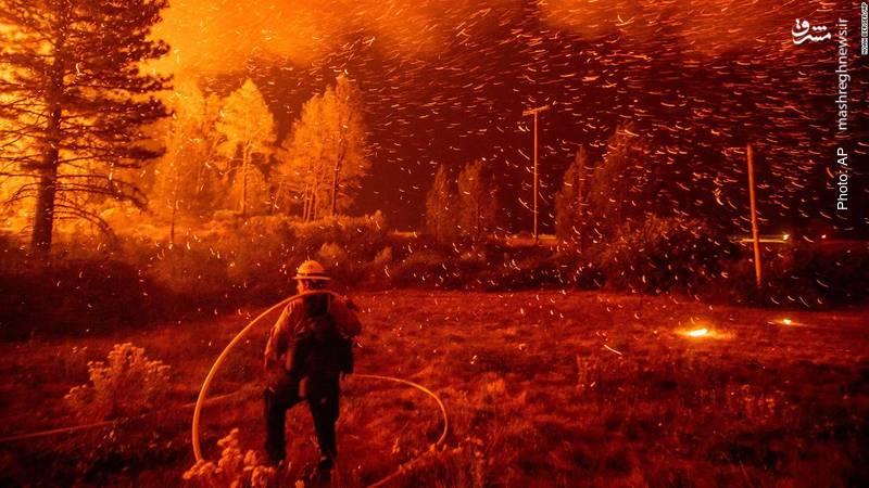 تلاش برای خاموشکردن آتش در جنگل ملی کالیفرنیا