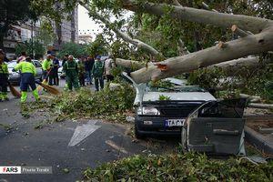 عکس/ خسارت طوفان امروز در تهران!