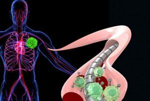 عضوهای آسیب پذیر در برابر اشعه ایکس کدامند؟