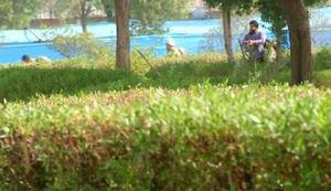 اولین عکس از تیراندازی یکی از تروریستهای اهواز