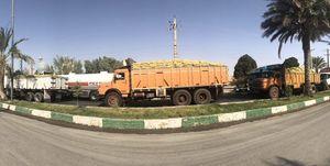 شلیک به کامیونهای حامل بار در استان فارس + فیلم