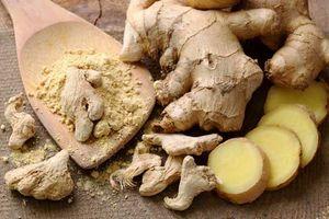 گیاه دارویی نمایه زنجبیل