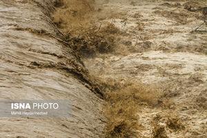 عکس/ وقوع سیل در شهرستان تالش