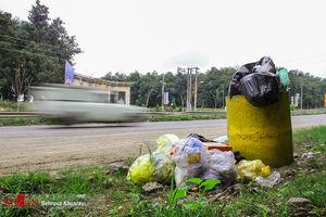 عکس/ جنگلهای آمل در تسخیر زباله