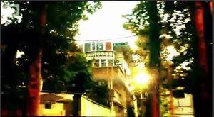 فیلم/ ماجرای عجیب دو منزل مسکونی در همسایگی کاخ سعدآباد