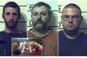 عکس/ بازداشت ۳ آمریکایی به جرم تجاوز به گاو و اسب!