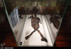 فیلم/ کشف اجساد دو هزار ساله در ویرانههای پمپئی