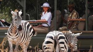 عکس/ همسر ترامپ در حیات وحش آفریقا