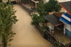 فیلم/ آبگرفتگی شدید یکی از روستاهای تنکابن!