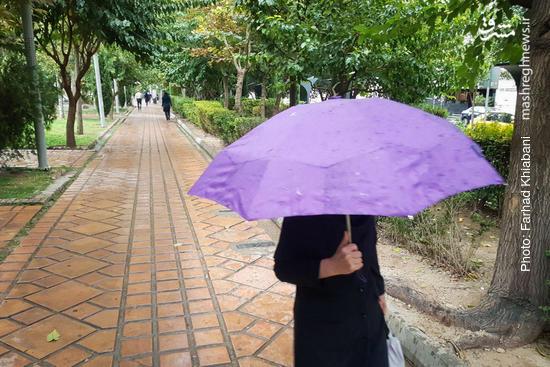 عکس/ بارش اولین باران پاییزی در تهران