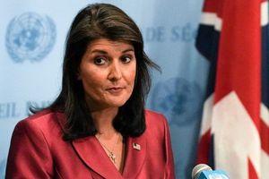 روایت بعیدینژاد از وداع تلخ نیکیهیلی با سازمان ملل