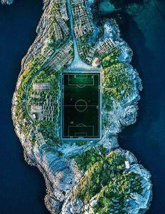 عکس/ خاصترین زمین چمن دنیا!