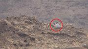 جزئیات پیشرویهای گسترده نیروهای یمنی در استانهای جنوبی عربستان/ انهدام ۱۲ تانک و ۳ پهپاد جاسوسی نیروهای شورشی+ نقشه میدانی و تصاویر