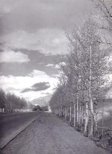 عکس/ خیابان ولیعصر، 63 سال قبل!