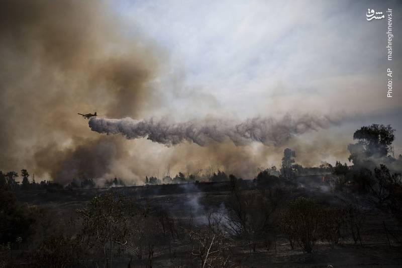 آتش سوزی در جنگلهای اسرائیل که گفته شده علت آن بالنهای آتشین فلسطینی بوده است.
