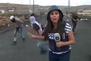 فیلم/ لحظه برخورد تیر پلاستیکی به خبرنگار زن