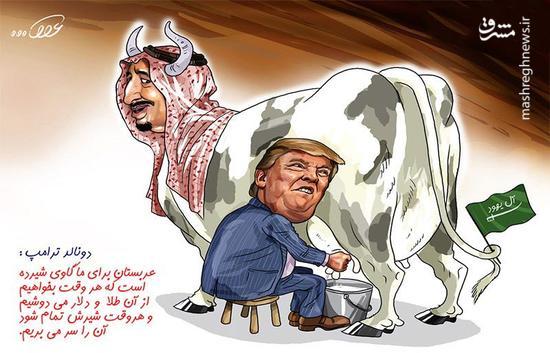 «آل سعود» کجا و «گاو» کجا!