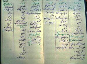 عکس/ لیستی متفاوت برای پیادهروی اربعین