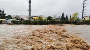 فیلم/ ورود سیلاب به خانه های شهرستان کلات