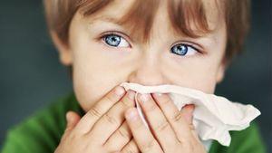 سرماخوردگی کهنه را از طریق این داروی گیاهی درمان کنید