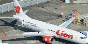 سقوط هواپیمای اندونزیایی با 189 مسافر/ 20 مقام دولتی کشته شدند+ عکس و فیلم