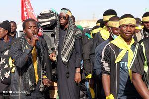حضور شیعیان نیجریه در مسیر نجف به کربلا