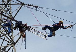 امروز برق را ۹۰ درصد ارزان تر از اول انقلاب به مشترکان می دهیم