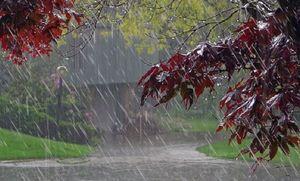 بارش باران شدید از ساعت ۱۶ در تهران