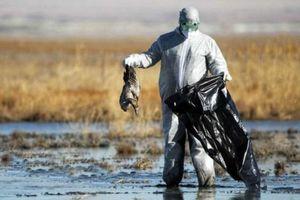 تصمیم خطرناک سازمان محیط زیست