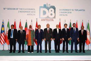 فیلم/ ظریف در اجلاس وزیران خارجه عضو دی8
