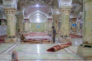 آمادهسازی صحن حضرت زهرا(س) برای روزهای پایانی ماه صفر +عکس