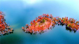 جنگل های رنگارنگ چین