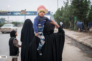 عکس/ پیادهروی زائران از کربلا به نجف