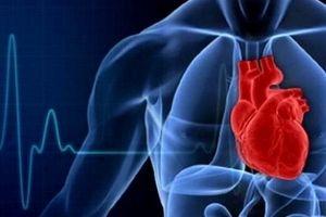 قلب سلامت