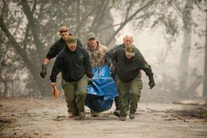 عکس/ کشف اجساد سوخته در کالیفرنیا