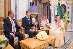 دیدار ملکسلمان با نماینده ویژه نخستوزیر انگلیس