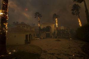 عکس/ مرگبارترین آتش سوزی جنگلهای کالیفرنیا