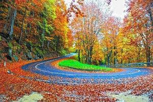 جاده توسکستان به شاهرود در استان گلستان