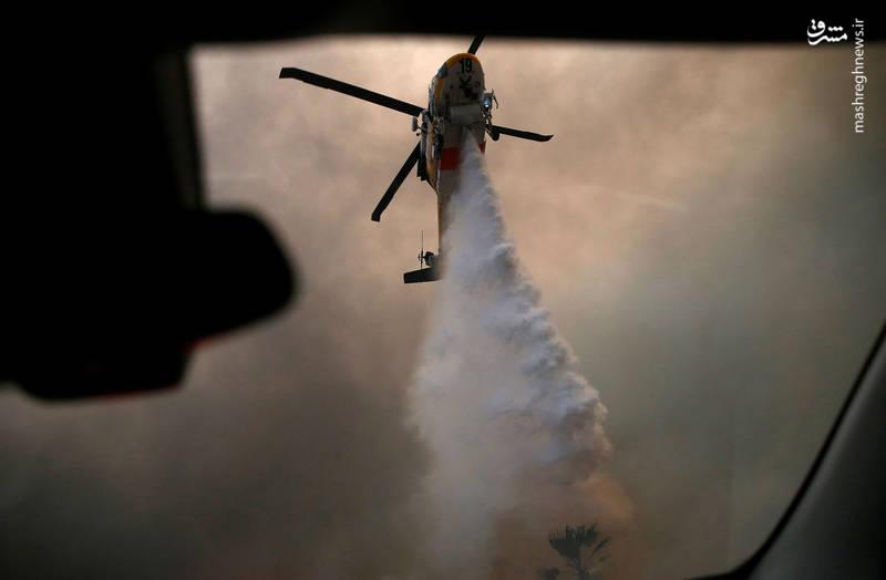2382906 - مرگبارترین آتش سوزی جنگلهای کالیفرنیا