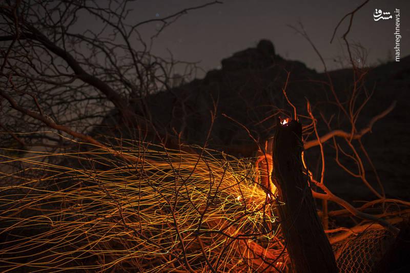 2382908 - مرگبارترین آتش سوزی جنگلهای کالیفرنیا