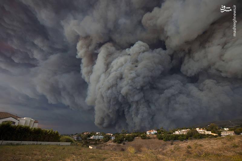 2382910 - مرگبارترین آتش سوزی جنگلهای کالیفرنیا