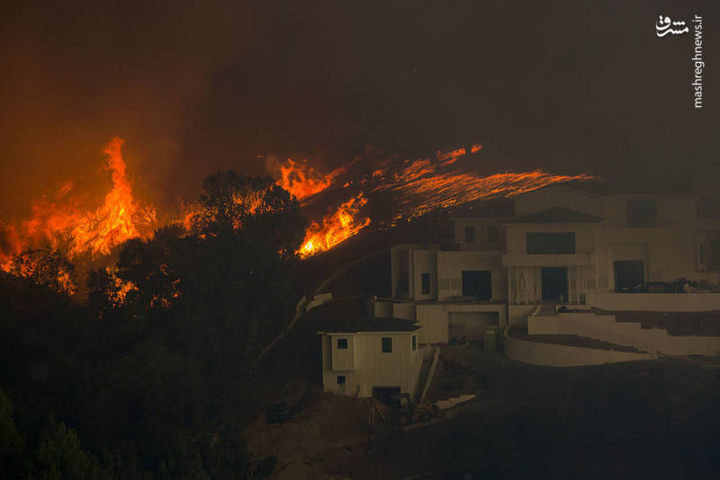 2382913 - مرگبارترین آتش سوزی جنگلهای کالیفرنیا
