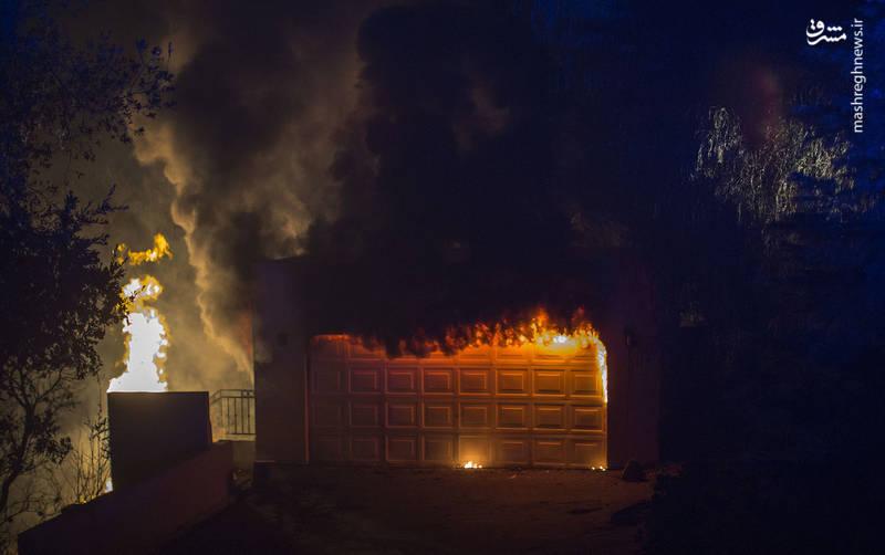 2382915 - مرگبارترین آتش سوزی جنگلهای کالیفرنیا
