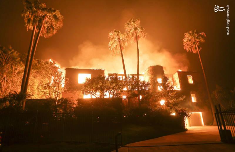 2382918 - مرگبارترین آتش سوزی جنگلهای کالیفرنیا